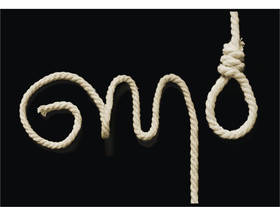 GMO by Zawleczka