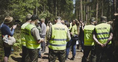 Straż Leśna nie wpuszcza naukowców do Puszczy