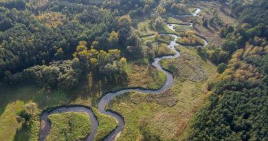 Ostra krytyka planów kanalizowania polskich rzek