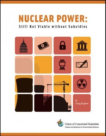 Raport UCS 2011