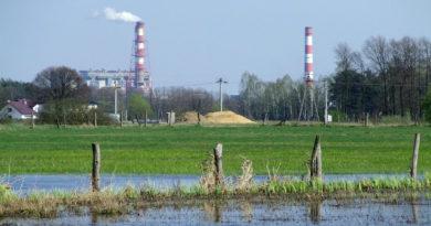 Zwycięstwo klimatyczne: Energa i Enea zawieszają finansowanie elektrowni Ostrołęka C