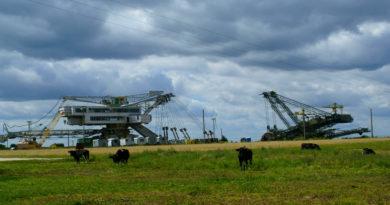 Prawnicy apelują o odstąpienie od budowy kopalni Złoczew