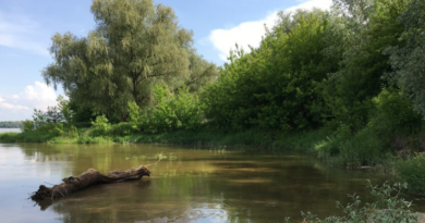 Ochrona wód i bioróżnorodności w Krajowym Planie Odbudowy