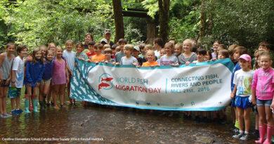 Światowy Dzień Migracji Ryb